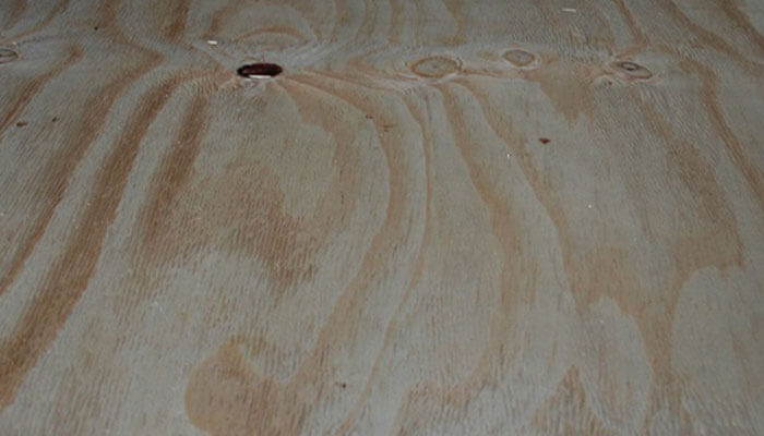 Yellow Pine Plywood Products